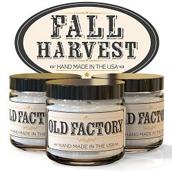 Scented Candles – Fall Harvest – Set of 3: Pumpkin Spice, Cranberry, and Autumn Leav ...