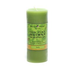 Bluecorn Beeswax 100% Pure Beeswax Aromatherapy Pillar Candles (2×4.5, Clarity: Eucalyptus, ...