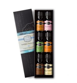 Winter Set of 6 Premium Grade Fragrance Oils – Cinnamon, Gingerbread, Sugar Cookies, Harve ...