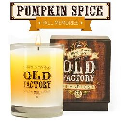 Scented Candles – Pumpkin Spice – Decorative Aromatherapy – 11-Ounce Soy Candle