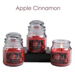 Hosley Set of 3 Apple Cinnamon Highly Scented, 2.65 Oz Wax, Jar Candle. Ideal Votive GIFT for pa ...