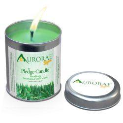 Aurorae 6.8 oz Eucalyptus Scented Soy Aromatherapy Candle