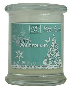 """""""Winter Wonderland"""" Natural Scented Soy Wax 12oz Christmas Candle. Aromatherapy Soy  ..."""