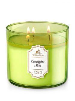 White Barn 3 Wick Candle 14.5 Ounce, Eucalyptus Mint