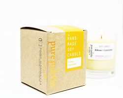 Citrus Lavender Spa Aromatherapy Soy Candle – Free Domestic Shipping