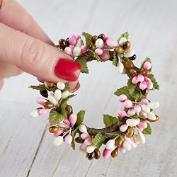 Group of 4 Plump Spring Blossom Pip Berry Miniature Candle or Napkin Rings for Decorating, Craft ...