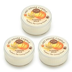 Pet House Candle – 3 Pack Mini Candle Set – Pumpkin Spice – Natural Soy Wax &# ...