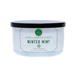 DW Home Winter Mint Triple wick candle