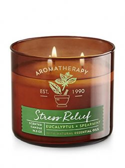 Bath & Body Works Aromatherapy Scented Candle in STRESS RELIEF – Eucalyptus + Spearmint
