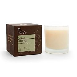 Pangea Organics Candle | Canadian Pine with White Sage | Best All-Natural Candle | Pine Scented  ...