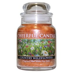 A Cheerful Giver Country Wildflower Jar Candles, 6 oz