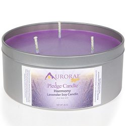 Aurorae 26 oz Lavender Scented Soy Aromatherapy Candle