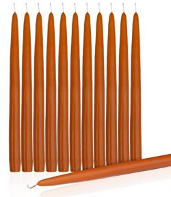 Orange Dripless Taper Candles 10″ Inch Tall Wedding Dinner Candle Set Of 12 (PUMPKIN)