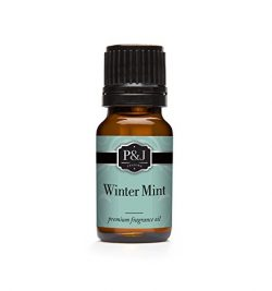 Winter Mint Fragrance Oil – Premium Grade Scented Oil – 10ml