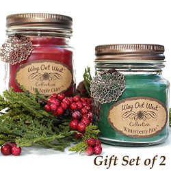Scented Candles (2-PACK) with Hot Apple Cider and Winterberry Pine – Jar Candles Gift Sets ...