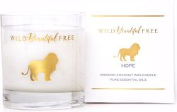 Wild Beautiful Free Organic Aromatherapy Candle with Citrus and Floral Essential Oils for Energy ...
