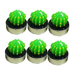NXDA Pack of 6 Non-spilling Cactus Candles for Home Decoration (B)