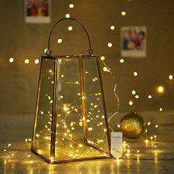 AYG 7 Pack 20 LED String Lights 7.2ft Fairy Lights Battery Operated|Dimmable&Bright Lights W ...