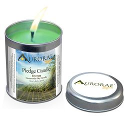 Aurorae 6.8 oz Corcovado Forest Scented Soy Aromatherapy Candle