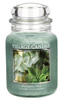 Village Candle Eucalyptus Mint 26 oz Glass Jar Scented Candle, Large