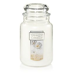 Yankee Candle Early Spring Bloom Jar Candle, Large