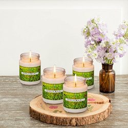 Natural Luxury Citronella Mosquito Repellent Candle,Soy Wax Mosquito Bug Repellent Decorative Gl ...