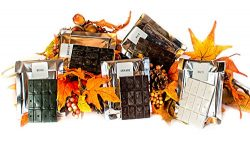 Candlewic Fall Colors Candle Dye Assortment Pack (Rust, Burgundy, Grass, Orange & White) For ...