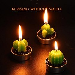 yoyowilo 3pcs Mini Cute Succulent  Cactus Candle For  Birthday Party Home Decor  and Valentine&# ...