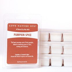 All Natural Soy Wax Melts, (3 Pack), Pumpkin Spice Scented, Non-Toxic, 18 Cubes Total, For use i ...
