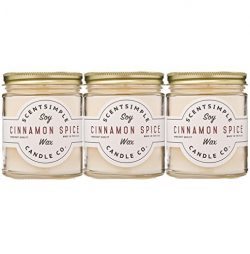 Scented Simple Scented Soy Candles – Cinnamon Spice (3 Pack)
