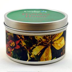 Holiday Home, Super Scented Soy Candle Tin (6 oz)