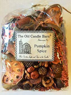 Pumpkin Spice Potpourri Cup Bag – Perfect Fall Decoration or Bowl Filler – Beautiful ...