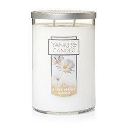 Yankee Candle Early Spring Bloom 2-Wick Large Tumbler,Fresh Scent