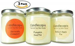 Candlecopia Pumpkin Soufflé, Baked Apple Pie and Seriously Cinnamon Strongly Scented Hand Poured ...