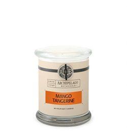 Archipelago Mango Tangerine Glass Jar Candle