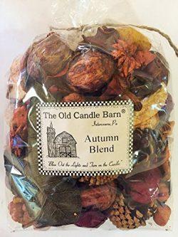 Autumn Blend Large 8 Cup Bag – Perfect Fall Decoration or Bowl Filler – Beautiful Au ...