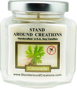 Premium 100% Soy Wax Candle – 6 – oz. Hex Jar- Scent – Citronella: A natural i ...