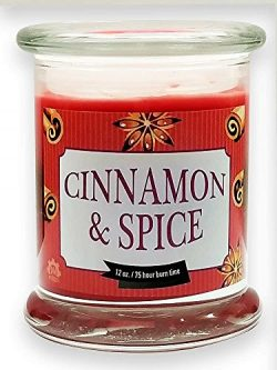 Multi Layer Cinnamon & Spice Natural Scented Soy Wax 12oz Glass Jar Winter Candle ~ Aromathe ...