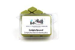 Eucalyptus Spearmint – Wax Melts, Wax Tarts, Soy Wax Melt, Candle Melts, Melt Candles, Sce ...