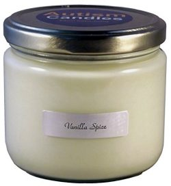 Vanilla Spice Scented Candle by Autism Candles