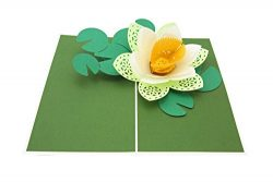 PopLife Lotus Blossom Mothers Day Pop Up Card for All Occasions – Mother's Day, Happ ...
