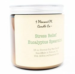 Stress Relief Eucalyptus Spearmint, Aromatherapy Coconut Soy Wax Candle Handmade in the USA with ...
