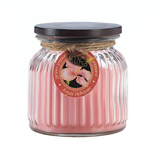 Zingz and Thingz Royal Hibiscus Ribbed Jar Candle