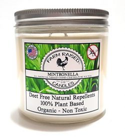 Mosquito Repellent Candle Natural Citronella, Lemongrass, Lavender, Natural Insect Bug Repellent ...