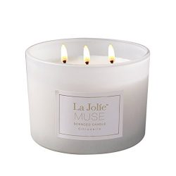 LA JOLIE MUSE Citronella Mosquito Repellent Scented Candle, Outdoor and Indoor, Natural Wax Glas ...