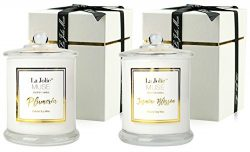 LA JOLIE MUSE Scented Candles Pack 2 Plumeria and Jasmine, 20 Ounce, 100% Soy Wax, Holiday Gifts ...