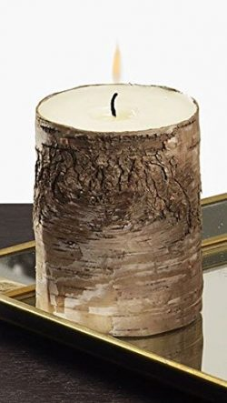 Serene Spaces Living Medium Birch Bark Pillar Candle – Unique All-Natural Bark Wrapped Candle, 5 ...