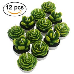 TinaWood 12 PCS Cactus Tealight Candles/Handmade Delicate Succulent Cactus Candles for Valentine ...