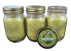 Natural Lemongrass Citronella Mosquito Repellent Candle (Set of 3) Indoor/Outdoor – 88 Hou ...