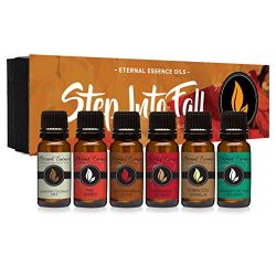 Step Into Fall Gift Set of 6 Premium Fragrance Oils – Almond Coconut Milk, Fire Amber, Sex ...